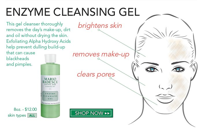 Enzyme Cleansing Gel - This gel cleanser thoroughly removes the day's make-up, dirt and oil without drying the skin. Exfoliating Alpha Hydroxy Acids help prevent dulling build-up that can cause blackheads and pimples.