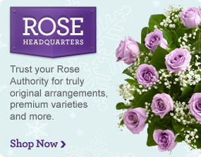 Rose Headquarters Trust your Rose Authority for truly original arrangements, premium varieties and more. Shop Now