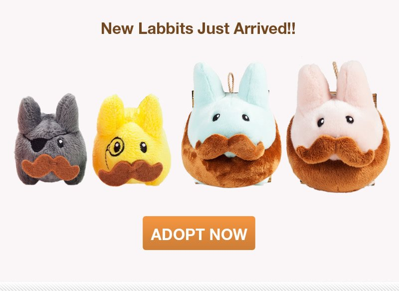 New Labbits Just Arrived.  Adopt Now!