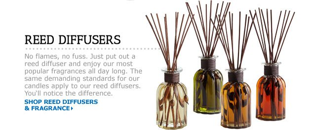 Reed Diffusers & Fragrance