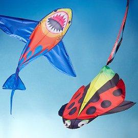 X Kites