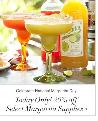 Celebrate National Margarita Day! - Today Only! 20% off Select Margarita Supplies*