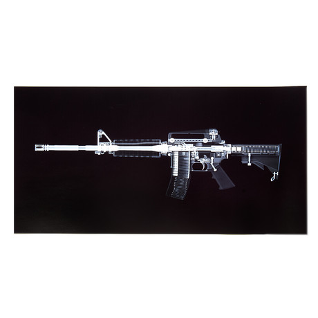 AR 15 Rifle