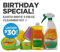 EARTH BRITE 5 PIECE CLEANING KIT