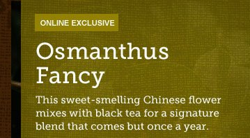 ONLINE EXCLUSIVE -- Osmanthus Fancy -- This sweet-smelling Chinese flower mixes with black tea for a signature blend that comes but once a year.