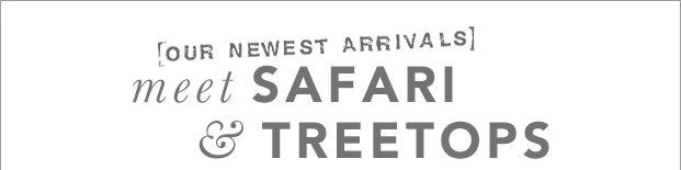 Safari + Treetops: Behind the Design