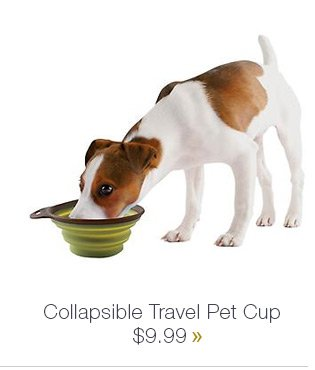 Callapsible Travel Pet Cup $9.99 »