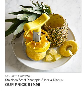 EXCLUSIVE & TOP-RATED - Stainless-Steel Pineapple Slicer & Dicer - OUR PRICE $19.95
