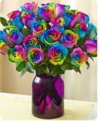 Kaleidoscope Roses Shop Now