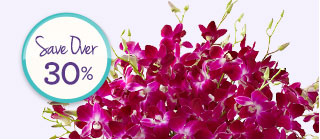 Deal of the Week Over 75 Blooms of Exotic Breeze™ Orchids, Just $29.99** Shop Now