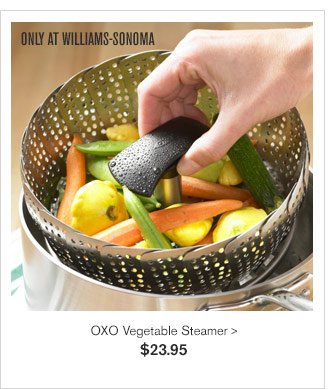 ONLY AT WILLIAMS-SONOMA - OXO Vegetable Steamer - $23.95