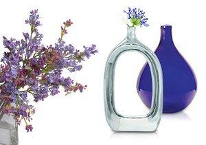 Always in Bloom: Flowers & Vases