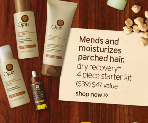 Mends and moisturizes parched hair dry recovery 4 piece starter kit  39 dollars 47 dollars value shop now