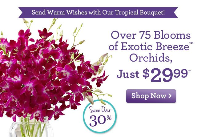 Double the Roses, Double the Smiles!  Over 75 Blooms of Exotic Breeze™ Orchids, just $29.99* Save Over 30%!  Shop Now
