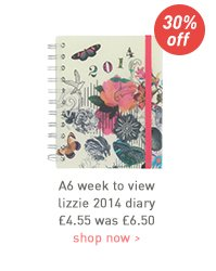 a6 week to view lizzie 2014 diary