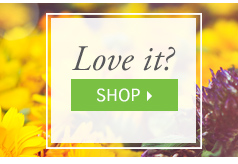 Love It? Shop Now