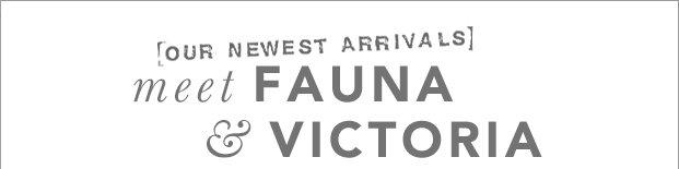 Victoria + Fauna: Behind the Design