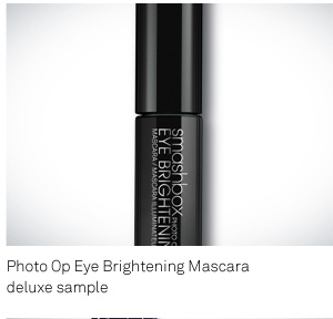 Deluxe Sample Photo Op Mascara