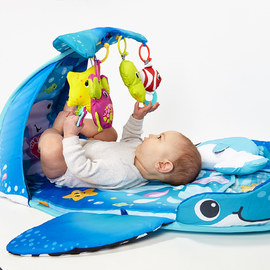 Baby's Bestsellers: Playmats & Gyms