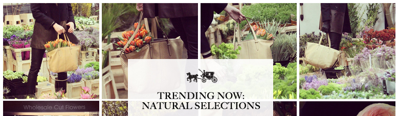TRENDING NOW: NATURAL SELECTIONS