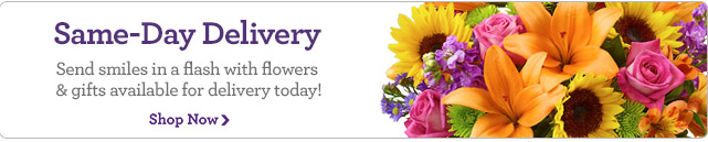 Same-Day Delivery  Send smiles in a flash with flowers & gifts available for delivery today! Shop Now