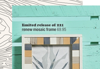 limited release of 221 renew mosaic frame  69.95