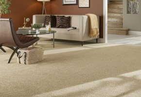 Room with STAINMASTER® Carpet