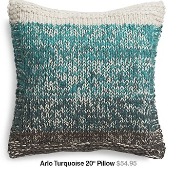 Arlo Turquoise 20 in Pillow