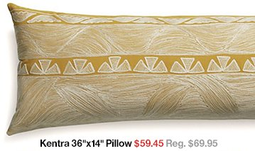 Kentra 36 in x 14 in Pillow