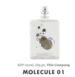MOLECULE 01 - EDP 100ml, £65.50, This Company