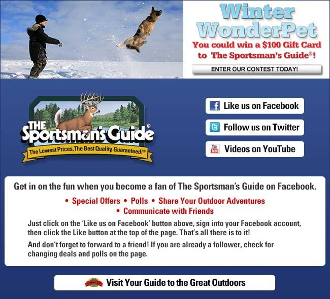 Enter The Guide's Contest: Winter WonderPet - win a $100 Gift Card!