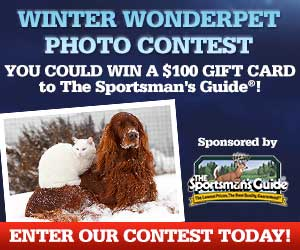 Enter our 'Winter WonderPet' Contest - win a $100 Gift Card!