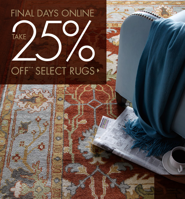 Final Days for 25% off Rugs!