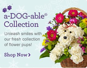 a-DOG-able®  Unleash smiles with our fresh collection of flower pups! Shop Now
