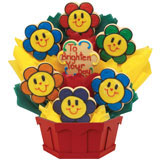 Smiling Face Daisies