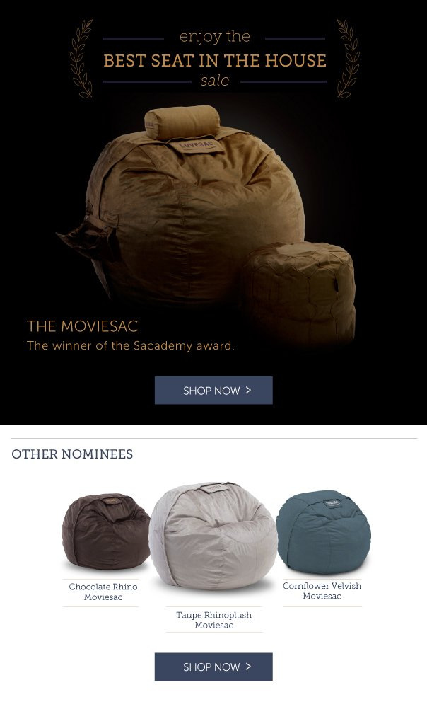 Enjoy the Best Seat in the House Sale! The Moviesac: The Winner of the Sacademy Awards!