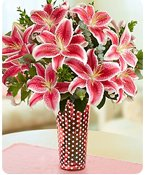 Pink Oriental Lilies Shop Now