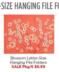 Blossom  Letter-Size Hanging File Folders SALE Pkg/6 $6.99