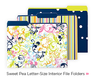 Sweet  Pea Letter-Size Interior File Folders »