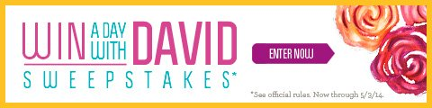 win a day with david sweepstakes