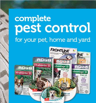 Complete pest control for your home, yard and pet