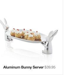 Aluminum Bunny Server