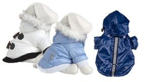 Sit. Stay. SALE: End of Winter Pet Gear Clearance
