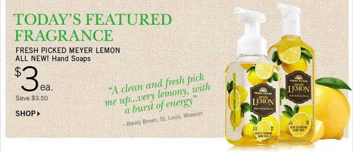 Meyer Lemon Hand Soap – $3
