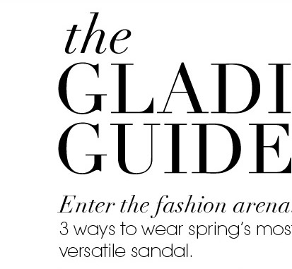 the GLADIATOR GUIDE