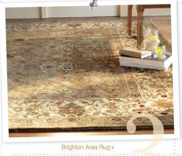 Brighton Area Rug >