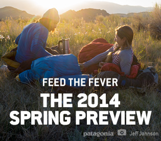 The 2014 Spring Preview