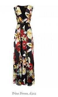Triss Dress, £515