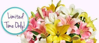 Deal of the Week Over 50 Blooms of Spring Lilies, Just $29.99** Shop Now
