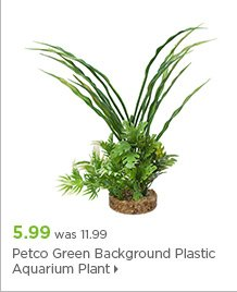Petco Green Background Plastic Aquarium Plant